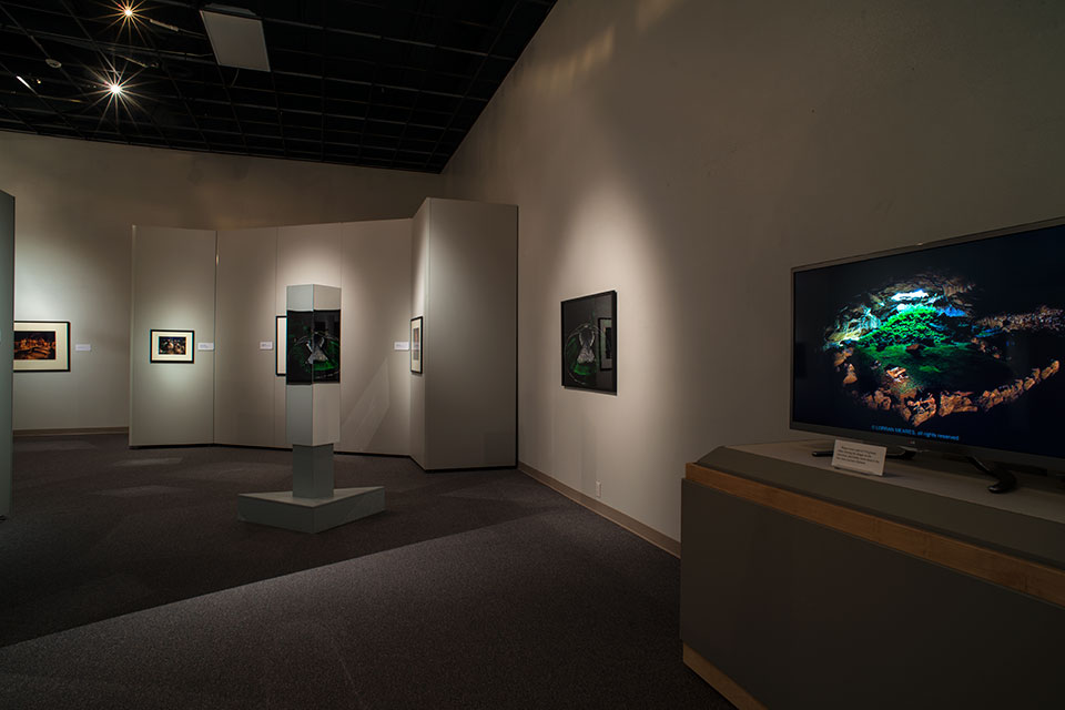 Fern Cave displayed on the 3D HDTV