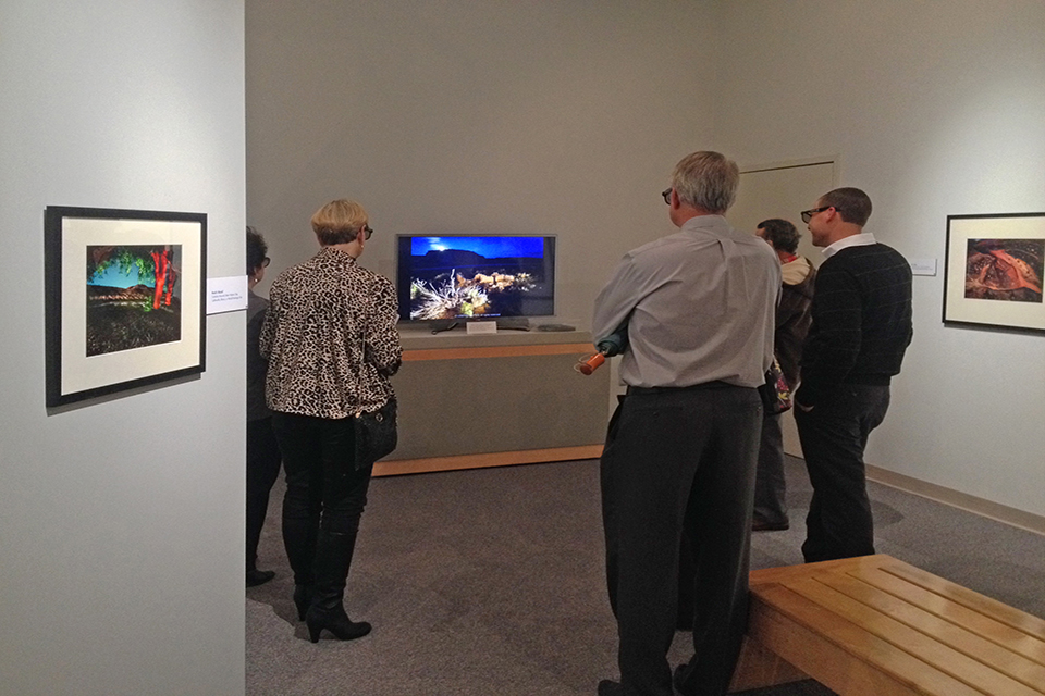 Museum patrons viewing 3D HDTV installation
