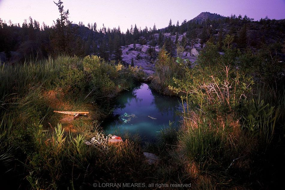 Mono Hot Springs, Sierra Nevadas, California