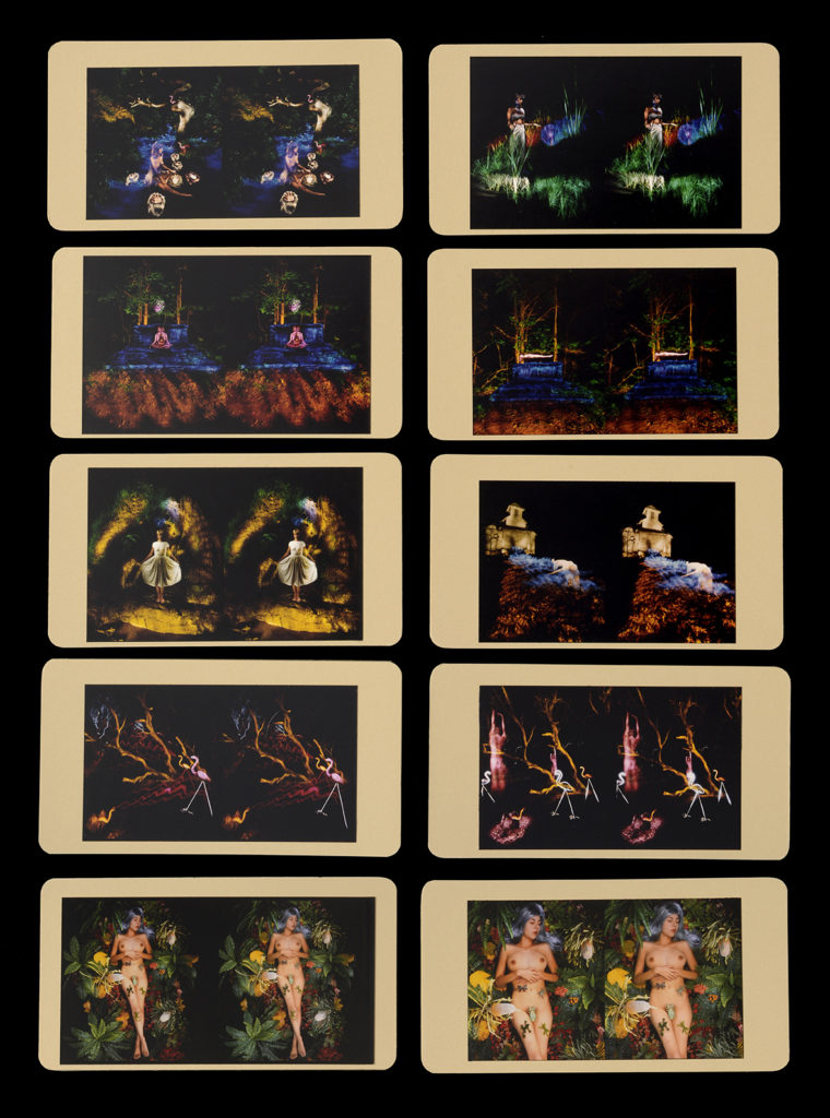 Edition of Ten Cibachrome Stereo Cards